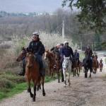 Salita verso Rocca Priora in località di Montefiore