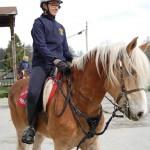 Appuntamento 10:30 presso il Centro Federale Equestre