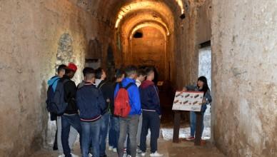 Visite didattiche Bargo Borghese