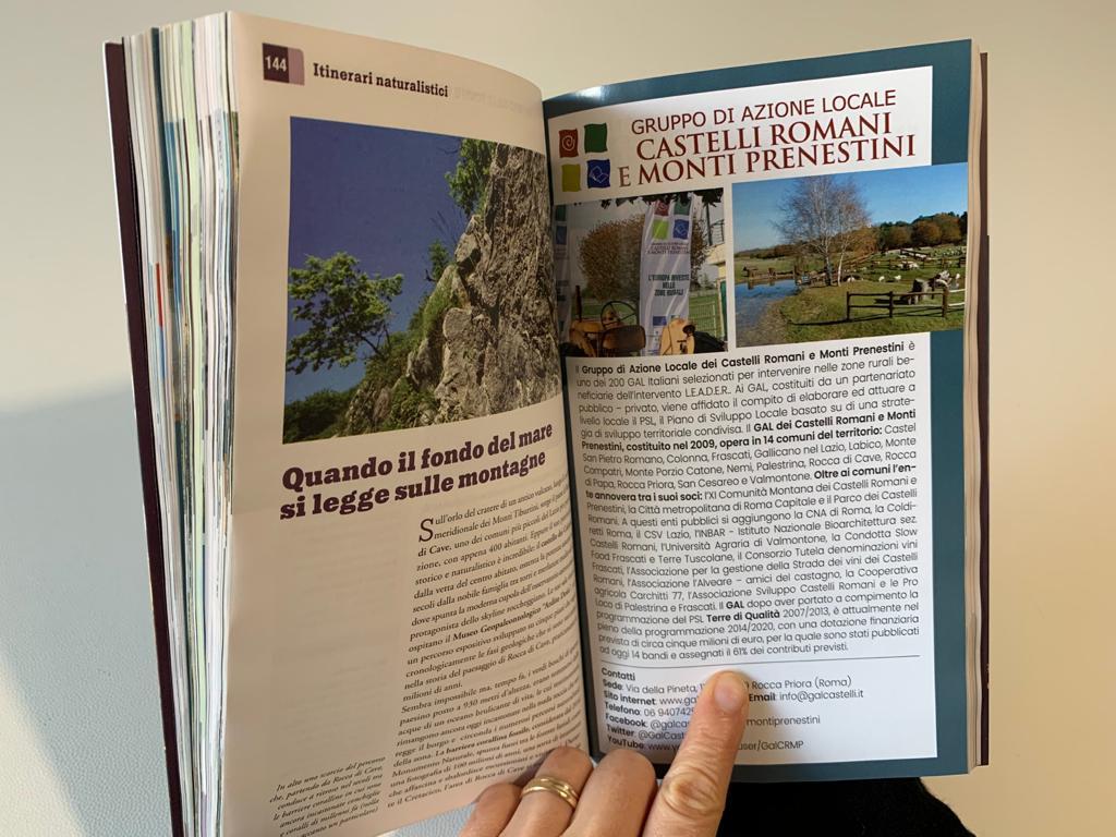 Una delle pagine interne della Guida